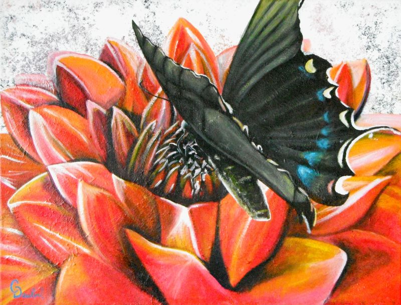 Black Butterfly on red flower painting