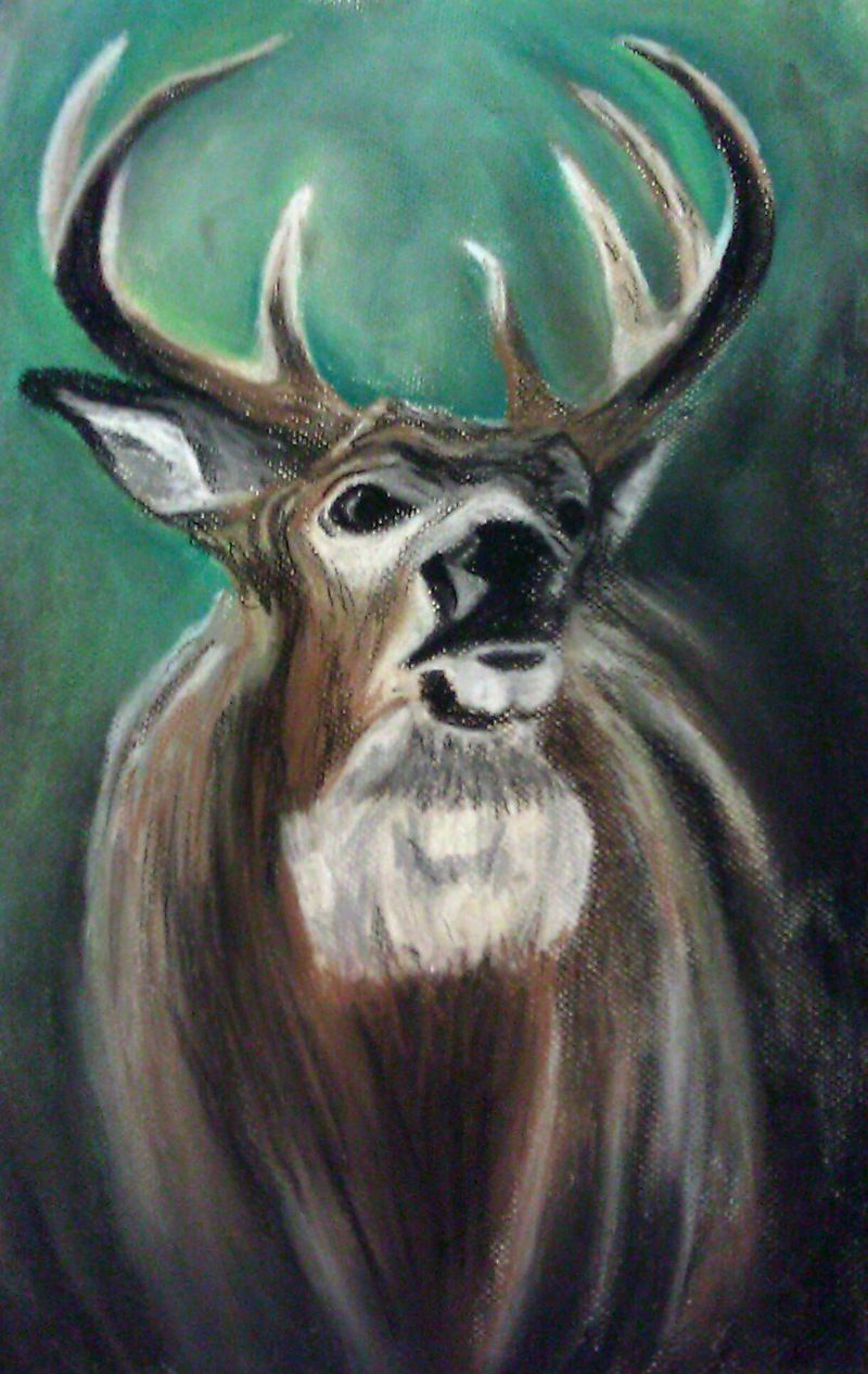 Big Papa Whitetail Buck Pastel